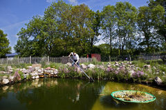 Garden pond artificial. Man fishes in garden pond with a landing net, a stone waterfall and pasture fences in the background Royalty Free Stock Photography