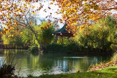 Garden Pond with Landscaping. A large pond with surrounding gardens, gazebo, and a bridge lit by afternoon sunshine in the fall season Royalty Free Stock Photos