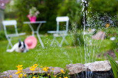 The garden pond royalty free stock images
