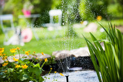The garden pond Royalty Free Stock Photo