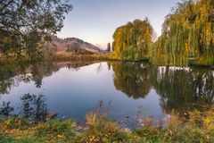 Garden pond surrounded by willow trees at sunset in autumn Stock Images