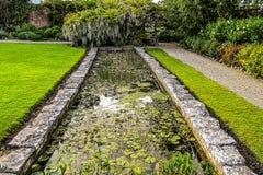 Garden Pond Stock Photos