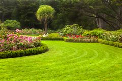 Garden portrait. Freshly mowed lawn in a formal garden Stock Images