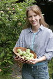 Garden portraits. Woman harvesting apples Royalty Free Stock Images