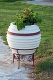 Garden pot Royalty Free Stock Image