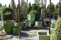 Garden pots Stock Image