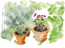 Garden pots Royalty Free Stock Photo