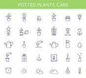 Garden and Potted Plants Care Instructions Icons and Pictograms. Vector Flat Outline Symbols. Garden and Potted Plants Care Instructions Icons and Pictograms Stock Photo