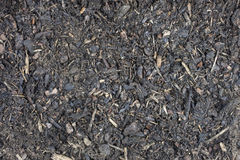 Garden potting compost Stock Images