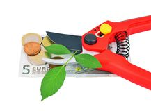 Garden pruner, green leaf and money Stock Image