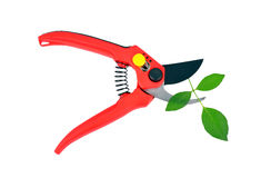 Garden pruner and green leaf Royalty Free Stock Photos