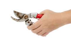 Garden Pruner in hand Royalty Free Stock Images