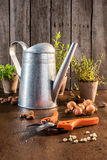 Garden pruner on wooden table Stock Photography