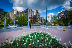Garden at Queen's Park, and the intersection of Queen's Park Cre Stock Images