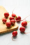Garden radish. Small pile of red ripe garden radish Royalty Free Stock Photos