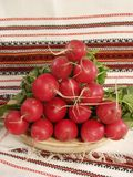 Garden radish Royalty Free Stock Photography