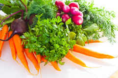 Garden radish, carrots and beet. Royalty Free Stock Photos