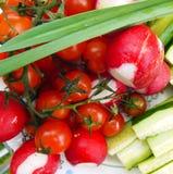Garden radish, cucumber, tomato, greens Royalty Free Stock Images
