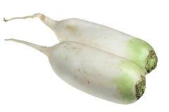Garden radish on a white background Stock Image