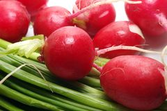 Garden Radishes And Green Spring Onions Stock Photography