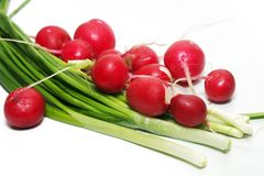 Garden Radishes And Green Spring Onions Royalty Free Stock Images