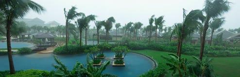 Garden in rain Royalty Free Stock Photography