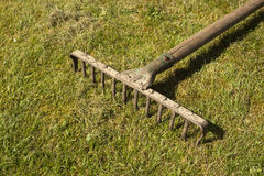 Garden Rake Royalty Free Stock Images
