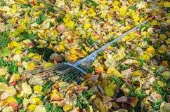 Garden rake Stock Photos