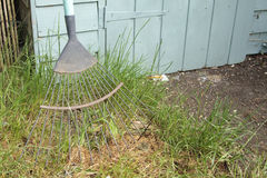 Garden rake Stock Photo