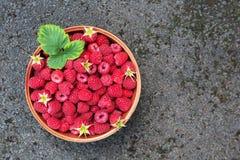 Summer raspberries in bowl on dark grey stone background copy sp. Garden raspberries with peduncles & green leaves in bowl on dark grey stone background. Summer Stock Photos