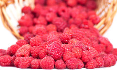 Garden raspberry poured out from a basket Royalty Free Stock Images