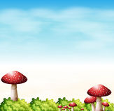 A garden with red mushrooms Royalty Free Stock Image