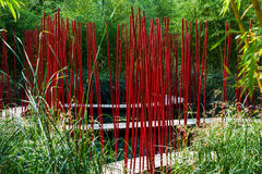Garden with red reed Stock Photography