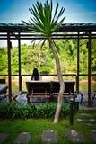 Garden resort. Near the river Royalty Free Stock Photos