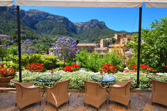 Garden restaurant with mountains view and Jacaranda trees. Garden restaurant with mountains view and blooming Jacaranda trees Stock Image