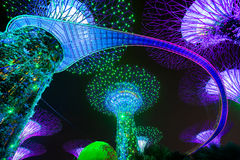 Garden Rhapsody Light Show at Super Tree Grove Royalty Free Stock Images