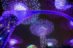 Garden Rhapsody Light Show at Super Tree Grove Royalty Free Stock Photography