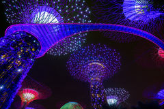 Garden Rhapsody Light Show at Super Tree Grove Royalty Free Stock Image