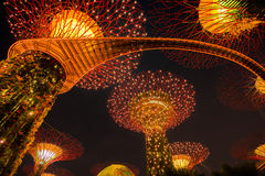 Garden Rhapsody Light Show at Super Tree Grove Stock Photo