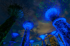 Garden Rhapsody Light Show at Super Tree Grove Stock Images