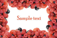 Garden ripe berries frame as background Royalty Free Stock Photo