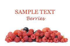 Garden ripe berries isolated over white Stock Photography