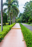 Garden and road in the park Royalty Free Stock Photography