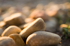 Garden Rock Collection, Shallow Focus Royalty Free Stock Image