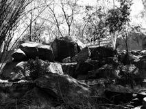 Garden Rocks Royalty Free Stock Photo
