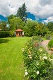 Garden with roses Stock Photos