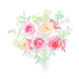 Garden roses french styled bouquet Royalty Free Stock Image