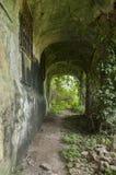 Garden of ruin church Royalty Free Stock Image