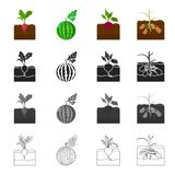 Garden, rural, production and other web icon in cartoon style.Vitamins, farm, plot, icons in set collection. Stock Images