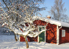 Garden's winter arbor Stock Image